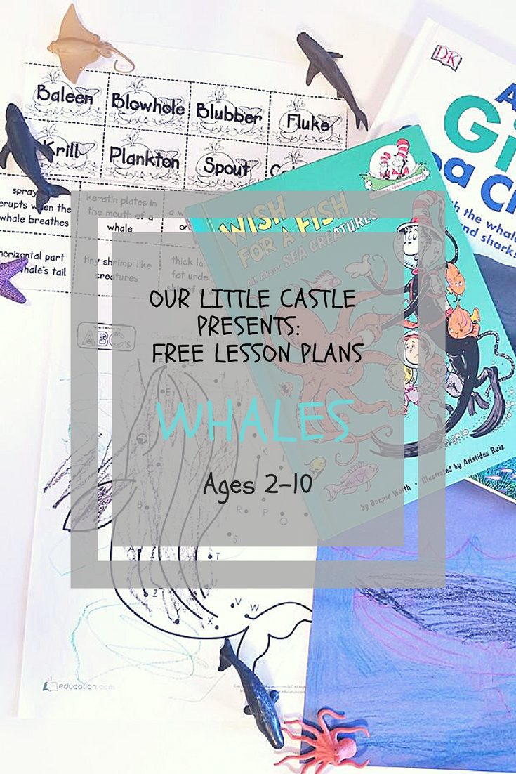 Our Little Castle Presents- Lesson Plans (8)