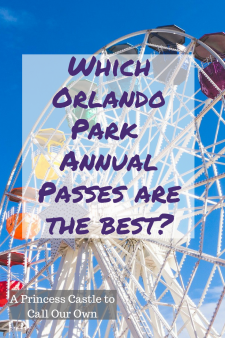 Annual Passes Review